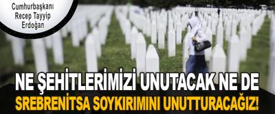 Ne Şehitlerimizi Unutacak Ne De Srebrenitsa Soykırımını Unutturacağız!