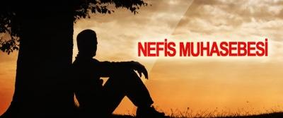 Nefis Muhasebesi