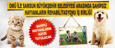 Omü İle Samsun Büyükşehir Belediyesi Arasında Sahipsiz Hayvanların Rehabilitasyonu İş Birliği