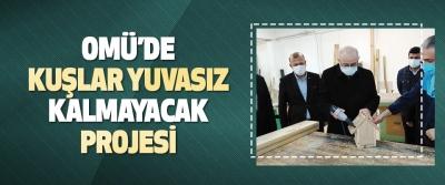 Omü'de Kuşlar Yuvasız Kalmayacak Projesi