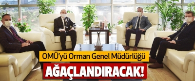 Omü'yü Orman Genel Müdürlüğü Ağaçlandıracak!
