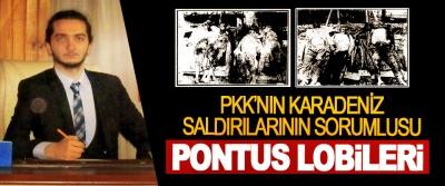 PKK'nın Karadeniz Saldırılarının Sorumlusu Pontus Lobileri