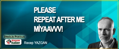 Please repeat after me; Miyaavvv!
