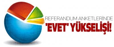 Referandum anketlerinde 'evet' yükselişi!