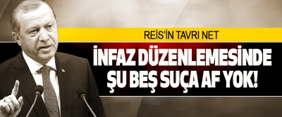 Reis'in Tavrı Net