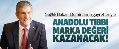 Sağlık Bakanı Demircan'ın gayretleriyle Anadolu tıbbı marka değeri kazanacak!