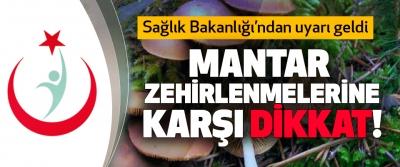 Sağlık Bakanlığı'ndan uyarı geldi, Mantar zehirlenmelerine karşı dikkat!