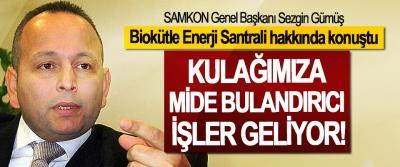 SAMKON Genel Başkanı Sezgin Gümüş Biokütle Enerji Santrali hakkında konuştu