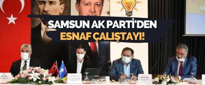 Samsun Ak Parti'den Esnaf Çalıştayı!