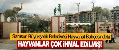 Samsun Büyükşehir Belediyesi Hayvanat Bahçesindeki Hayvanlar Çok İhmal Edilmiş!