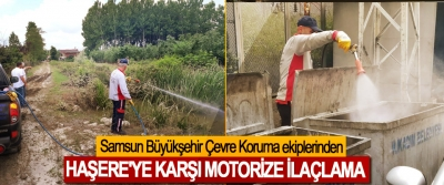 Samsun Büyükşehir Çevre Koruma ekiplerinden Haşere'ye Karşı Motorize İlaçlama