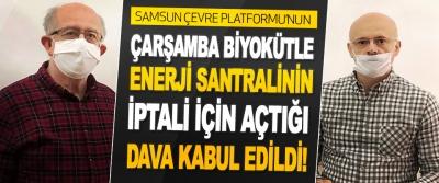 Samsun Çevre Platformu'nun Çarşamba Biyokütle Enerji Santralının İptali İçin Açtığı Dava Kabul Edildi!