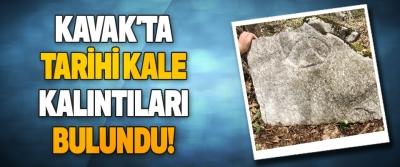 Samsun Kavak'ta Tarihi Kale Kalıntıları Bulundu!