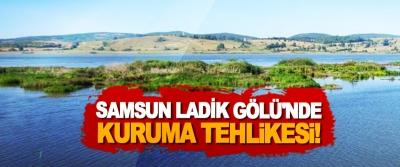 Samsun Ladik Gölü'nde kuruma tehlikesi!