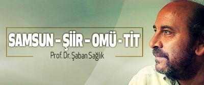 Samsun – Şiir – OMÜ - TİT