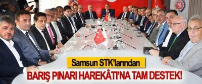 Samsun STK'larından Barış Pınarı Harekâtı'na tam destek!