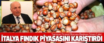 Samsun Ticaret Borsası Başkanı Sinan Çakır:  İtalya Fındık Piyasasını Karıştırdı