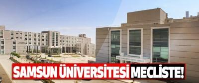 Samsun üniversitesi mecliste!