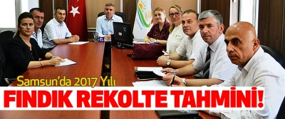 Samsun'da 2017 Yılı  Fındık Rekolte Tahmini Çalışmaları Tamamlandı