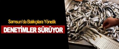 Samsun'da Balıkçılara Yönelik denetimler sürüyor