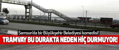Samsun'da bir Büyükşehir Belediyesi komedisi!