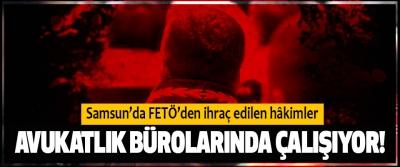 Samsun'da FETÖ'den ihraç edilen hâkimler Avukatlık bürolarında çalışıyor!