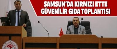 Samsun'da Kırmızı Ette Güvenilir Gıda Toplantısı