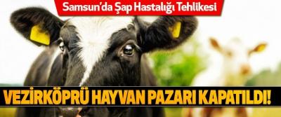 Samsun'da Şap Hastalığı Tehlikesi