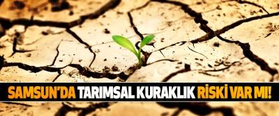 Samsun'da tarımsal kuraklık riski var mı!