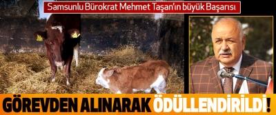 Samsunlu Bürokrat Mehmet Taşan'ın büyük Başarısı Görevden alınarak ödüllendirildi!