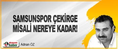 Samsunspor Çekirge Misali Nereye Kadar!