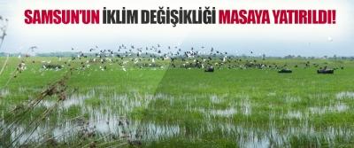 Samsun'un İklim Değişikliği Masaya Yatırıldı!