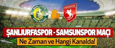 Şanlıurfaspor - Samsunspor maçı Ne Zaman ve Hangi Kanalda!
