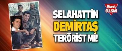 Selahattin Demirtaş Terörist mi!