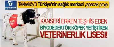 Tekkeköy'ü Türkiye'nin sağlık merkezi yapacak proje; Kanseri erken teşhis eden biyodedektör köpek yetiştiren veterinerlik lisesi!