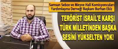 Terörist İsrail'e karşı Türk Milletinden başka sesini yükselten yok!