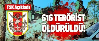 TSK açıkladı; 616 Terör Örgütü Mensubu Öldürüldü!