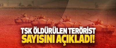 TSK Öldürülen Terörist Sayısını Açıkladı!