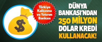 Türkiye Kalkınma ve Yatırım Bankası Kredi Kullanacak!
