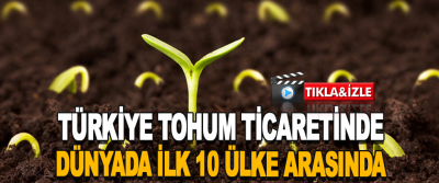 Türkiye Tohum Ticaretinde Dünyada İlk 10 Ülke Arasında