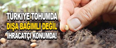 Türkiye Tohumda Dışa Bağımlı Değil İhracatçı Konumda!