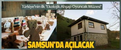 Türkiye'nin ilk 'Ekolojik Ahşap Oyuncak Müzesi' Samsun'da Açılacak