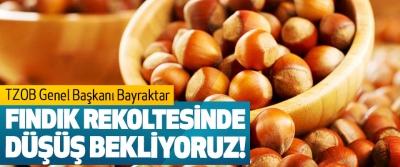 TZOB Genel Başkanı Bayraktar: Fındık rekoltesinde düşüş bekliyoruz!