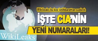 Wikileaks Bu Kez İstihbarattan Sızdırdı