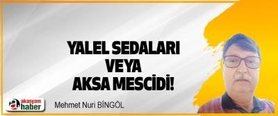 Yalel Sedaları veya Aksa Mescidi!