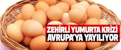 Zehirli Yumurta Krizi Avrupa'ya Yayılıyor