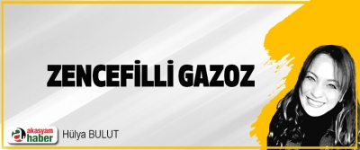 Zencefilli Gazoz